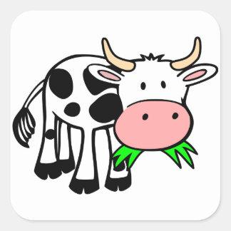 Holstein cow square sticker