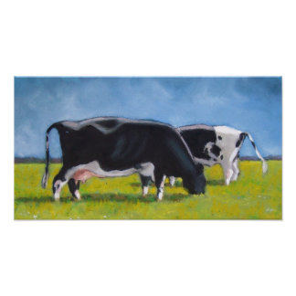 HOLSTEIN COWS ART POSTER