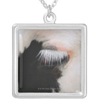 Holstein cow's face, close-up of eye silver plated necklace