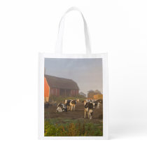 Holstein dairy cows outside a barn at sunrise reusable grocery bag