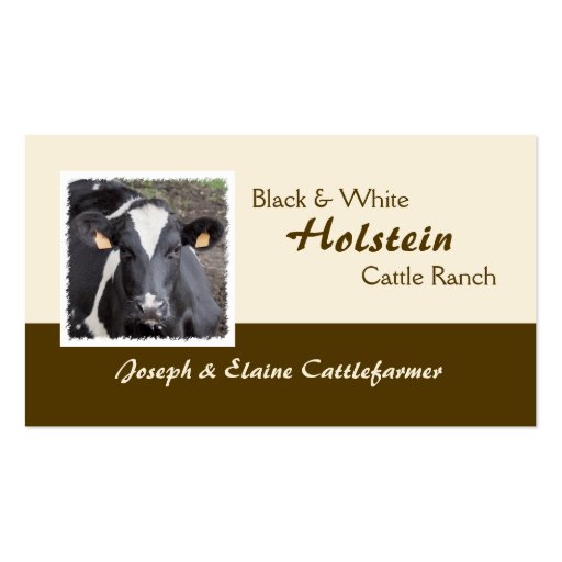 Holstein dairy or beef business card