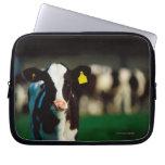 Holstein-Friesian calf Laptop Sleeves