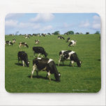 Holstein-Friesian cattle, Ireland Mouse Pad