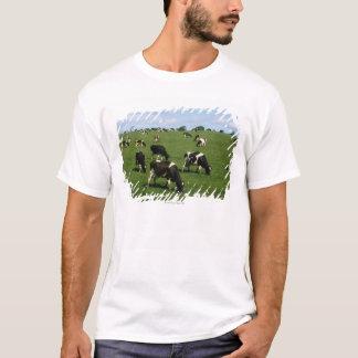 Holstein-Friesian cattle, Ireland T-Shirt