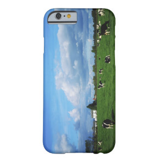 Holstein-Friesian Cattle near Thurles, Co Barely There iPhone 6 Case