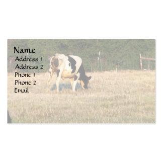 Holstein Grazing Business Card