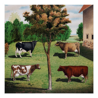 Holstein, Jersey, Ayrshire & Shorthorn cows Poster