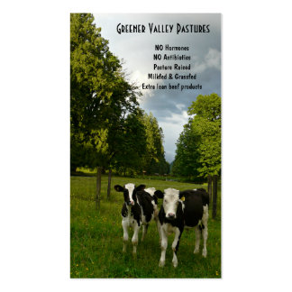 Holstein Veal Baby Beef Farm Double-Sided Standard Business Cards (Pack Of 100)