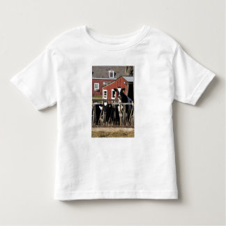 Holsteins at Boggy Meadow Farm in Walpole, New Toddler T-shirt