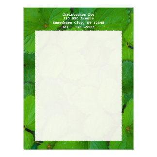 Holy Basil Tulsi Green Mint Leaves Letterhead