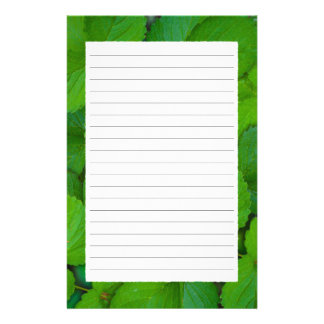 Holy Basil Tulsi Green Mint Leaves Stationery