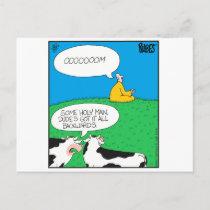 Holy Cow 2017 Zazzle Postcard
