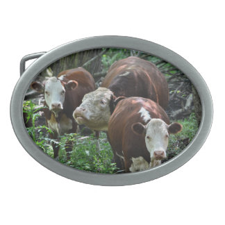 Holy Cow Belt Buckle