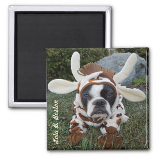 Holy Cow!  Magnet