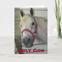 HOLY COW ***MERRY CHRISTMAS*** TO YOU HOLIDAY CARD