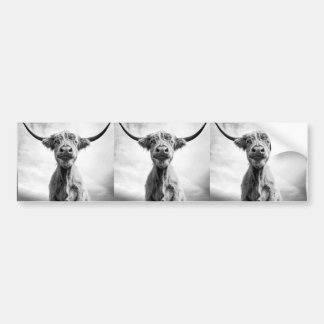 Holy Cow Mesotint Style Art Photography Bumper Sticker