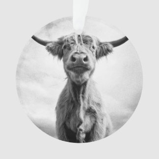 Holy Cow Mesotint Style Art Photography Ornament