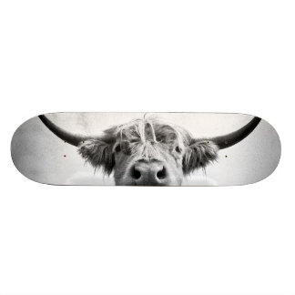 Holy Cow Mesotint Style Art Photography Skateboards