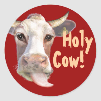 Holy Cow! Classic Round Sticker