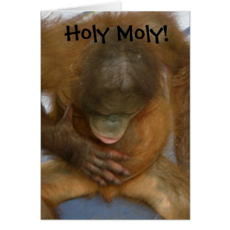 Holy Moly Funny Vasectomy Greeting Card