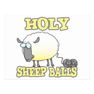 holy sheep balls funny unraveling yarn sheep postcard