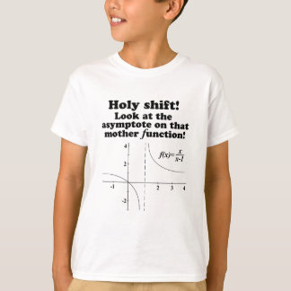 'Holy Shift! Look at the asymptote Math Apparel T-Shirt