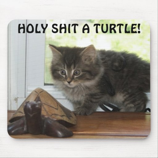 HOLY SHIT A TURTLE! MOUSE PADS