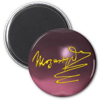 HOMAGE TO MOZART,pink purple amethyst Magnet