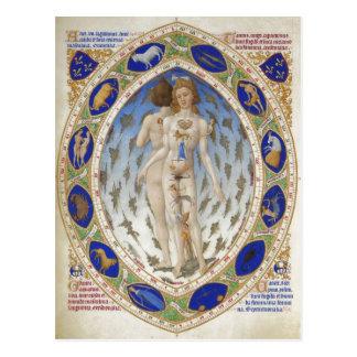 ¿Hombre anatómico, Les Tr? riquezas Heures du duc  Tarjetas Postales
