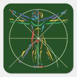 Hombre de la anatomía de DaVinci en los colores de Calcomania Cuadrada Personalizada