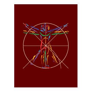 Hombre de la anatomía de DaVinci en los colores de Postal