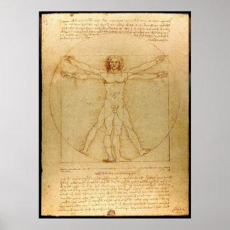 Hombre de Vitruvian de Leonardo da Vinci Posters