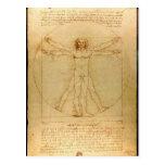 Hombre de Vitruvian de Leonardo da Vinci Tarjeta Postal