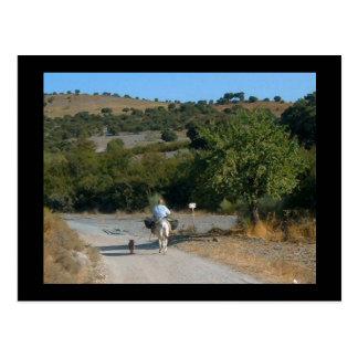 Hombre en la postal española escénica del burro