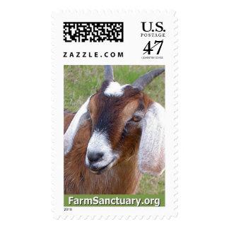 Hombre la cabra timbre postal