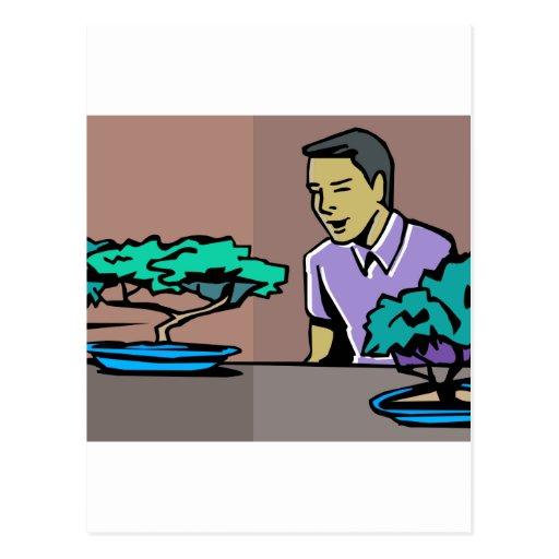 Hombre que admira dos árboles de los bonsais gráfi postal