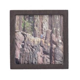 Hombre salvaje en los acantilados caja de joyas de calidad