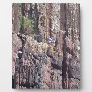 Hombre salvaje en los acantilados placa de plastico