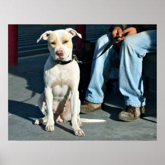 Hombre y perro sin hogar #2 póster