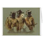 hombres del búho tarjetas