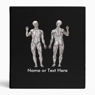 """Hombres del músculo - anatomía del sistema carpeta 1"""""""