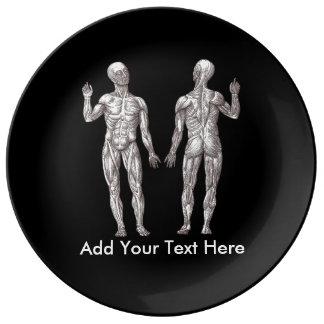 Hombres del músculo - anatomía del sistema plato de cerámica