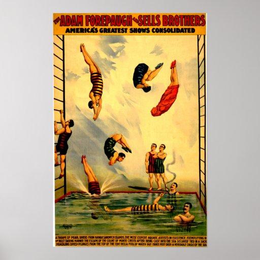 Hombres que se zambullen en el poster 1898 del cir