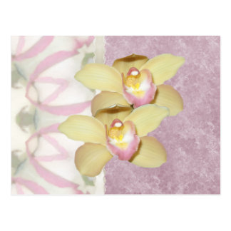 Home and Garden ~ Orchids Postcard