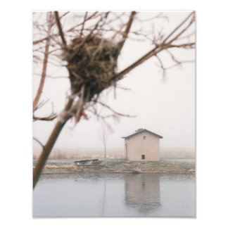 Home Bird's Nest Photo Print