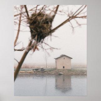 Home Bird's Nest Poster