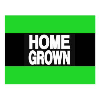 Home Grown 2 Green Postcard
