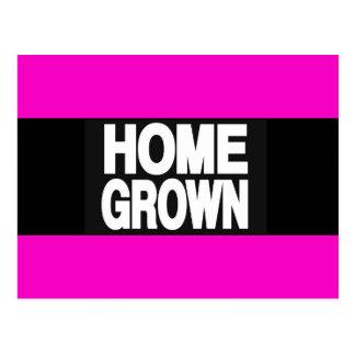 Home Grown 2 Pink Postcard