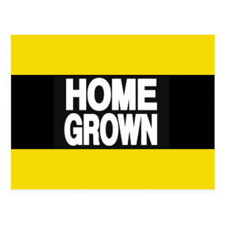Home Grown 2 Yellow Postcard