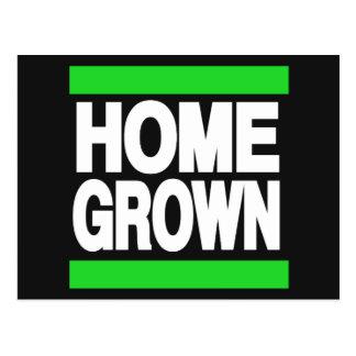 Home Grown Green Postcard